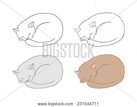 Hand Drawn Vector Illustration Of Sleeping Curled Up Cats, Unfilled Outlines And Coloured. Isolated