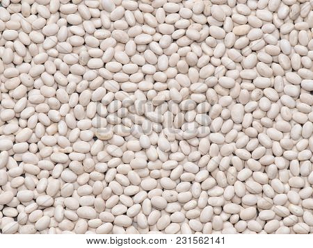 A Crop Of Beans Close-up. Isolated. White. Macro
