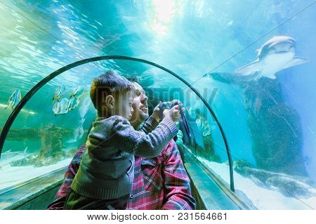 Father And Son Look At The Fish In The Aquarium In Oceanarium. Boy Is Taking Photo With A Toy Camera
