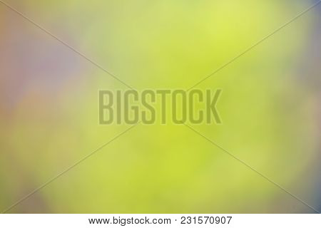 Nature Gradient Backdrop With Bright Sunlight. Abstract Green Blurred Background. Ecology Concept Fo