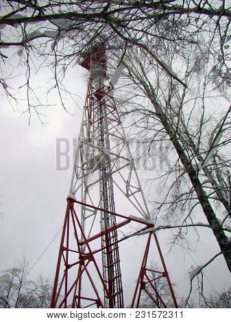 Cell Tower View In The Winter Forest