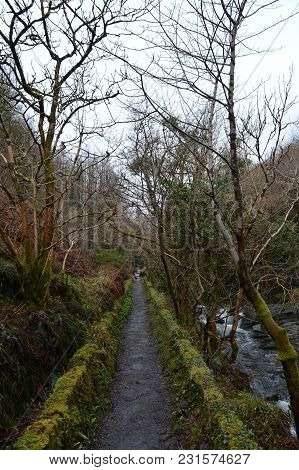 Part Of The Path Walking Along Laxey Glen, Isle Of Man