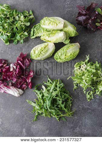 Various Types Of Salad Leaves  On A Grey Background. Little Gem Lettuce, Corn Lettuce, Arugula, Frie