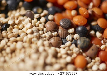 Different Lentils, Red, Brown And White Quinoa