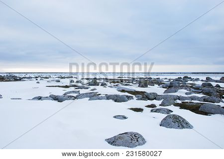Beautiful Snowy And Rocky Coastline At The Swedish Island Oland In The Baltic Sea