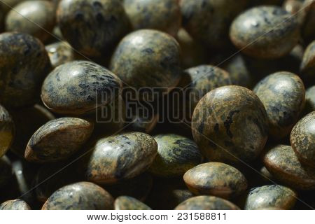 Macro Shot Of Green And Uncooked Puy Lentils