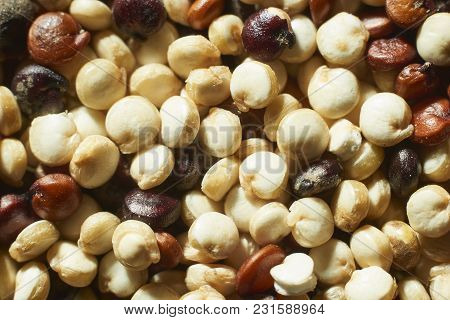 Macro Shot Of Red, Brown And White Quinoa Seeds