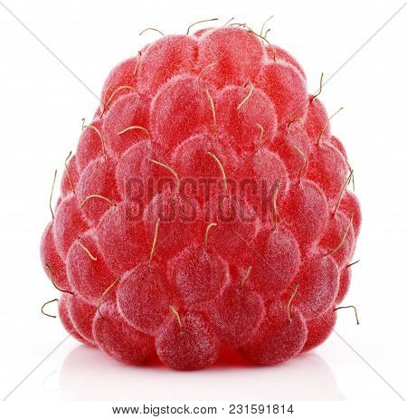Single Red Raspberry Berry Fruit Isolated On White Background