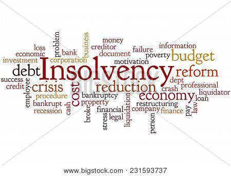 Insolvency Word Cloud Concept 4