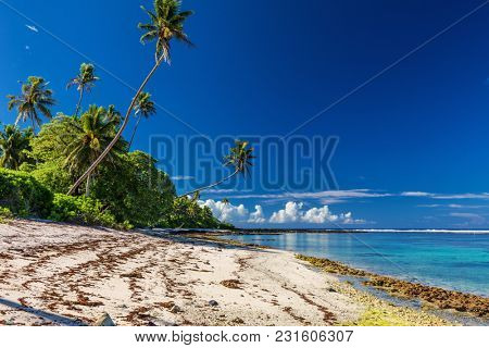 Tropical Samoa beach with palm trees during low tide, south side of Upolu