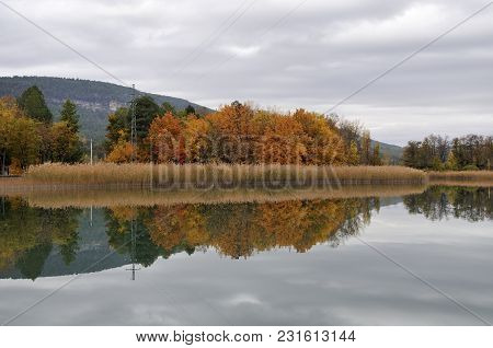 Trees With Their Reflection In The Water