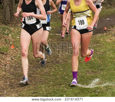 High School Girls Competing In A Cross Country Race At A Park In Upstate New York Running Through Th