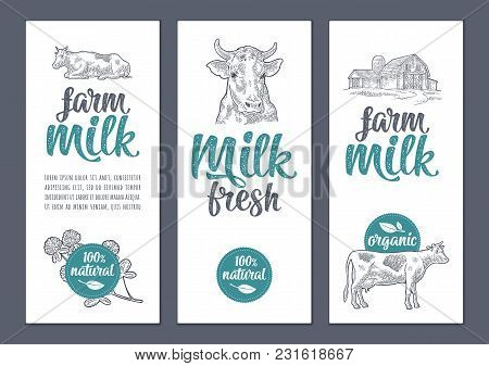 Template Poster Or Label With Cow, Clover, Hangar. Farm Fresh Milk Calligraphic Handwriting Letterin