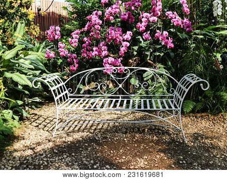 Vintage White Chair In Garden With Orchid Flower Background