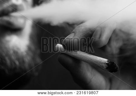 Joint In Hand. A Man Smokes Cannabis Weed, A . Smoke On A Black Background. Concepts Of Medical Mari