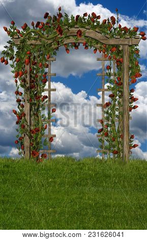 A Trellis With Roses In A Field With Blue Skies.