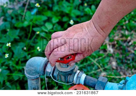 Save Water To Save The World, To The Human Race