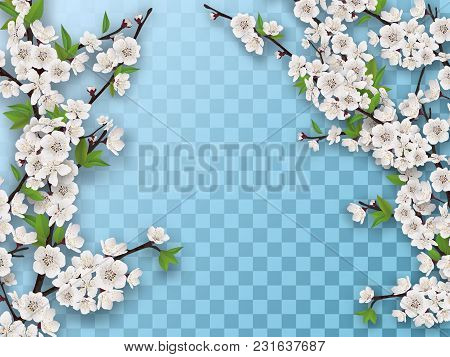 Set Of Spring Blooming Fruit Tree Branches. White Flowers And Green Leaves On A Branch. Element For