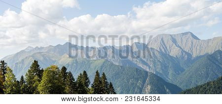 Photo Of Picturesque Mountainous Landscape With Pine Forest Against Blue Sky With Clouds