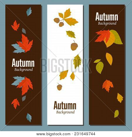 Banners Set Of Autumn Leaves Vector Illustration. Background With Hand Drawn Autumn Leaves. Design E
