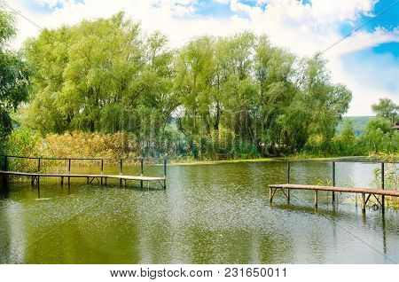 Beautiful Pond With Bridge And Green Trees