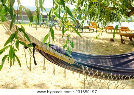 A Hammock On The Beach With Chaise-longues