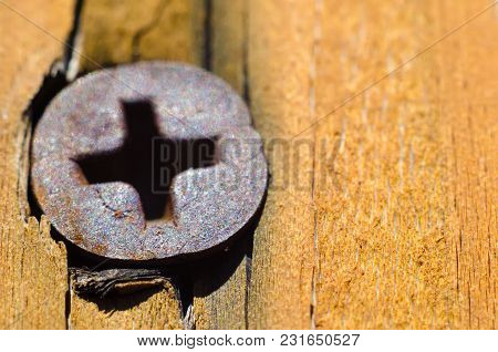 A Old Screw In A Wooden Plank