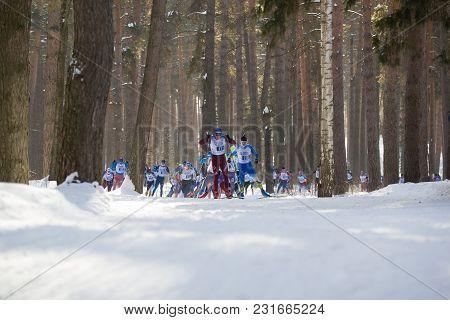 Kazan, Russia - March, 2018: Athletes Skiers Running Kazan Ski Marathon In The Winter Woods, Winter
