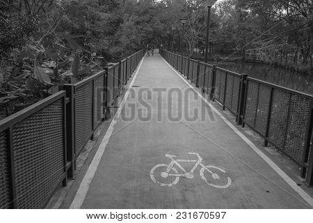 Abstract Black And White Image Empty Bicycle Lane Flanked With Steel Fence In Public Park. (selectiv