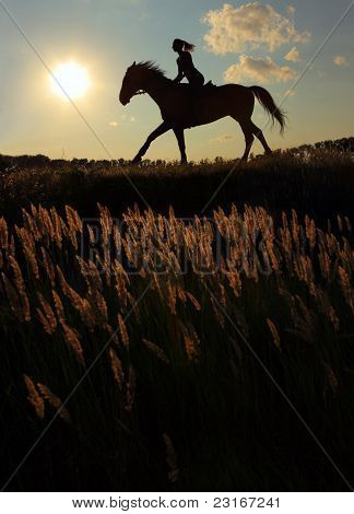 Girl horseback riding at sunset