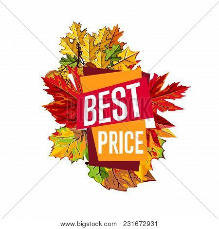 Autumn Sale Design Template, Vector Illustration. Best Price Banner With Colorful Leaves On White Ba