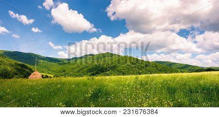 Haystack On The Grassy Field In Mountains. Beautiful Countryside Summer Scenery In Carpathian Mounta