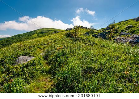Fluffy Cloud Rising Above The Grassy Hill. Beautiful Mountainous Landscape. Good Weather Forecast Co