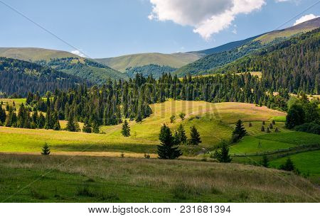 Village Outskirts Near The Forest In Mountains. Beautiful Countryside Landscape In Summer.