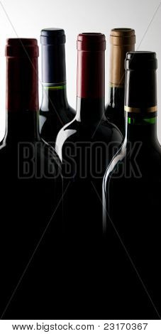 Wine Bottles In The Dark