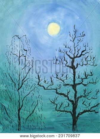 Winter Moonlight Night. Full Moon Between The Trees, Birch And Chestnut. Watercolor Painting And Ink