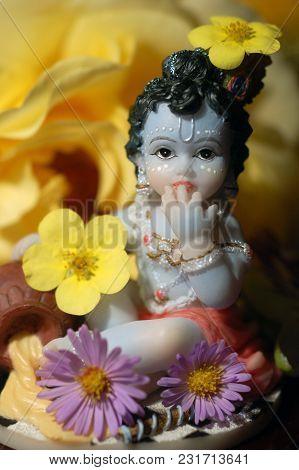 Baby Krishna The Butter Thief With Flowers Happy Janamastami
