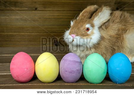 Furry Bunny With Row Of Colorful Easter Eggs On Rustic Wood