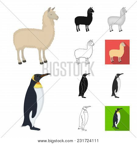 Different Animals Cartoon, Black, Flat, Monochrome, Outline Icons In Set Collection For Design. Bird