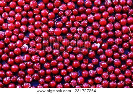 The Frozen Berry Red, A Natural Vitamins