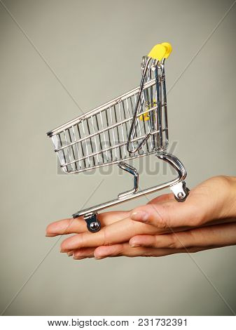 Buying Things At Market Shops Concept. Woman Hand Holding Small Tiny Shopping Cart Trolley