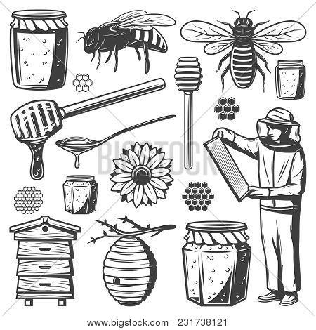 Honey Making Vintage Monochrome Vector Illustration Set. Honey Jar, Honey Stick, Bee, Flower And Hon