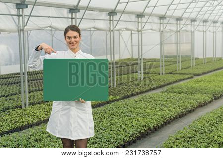 Woman Holding Black Board With Space For Text In Greenhouse Nursery. Seedlings Greenhouse.