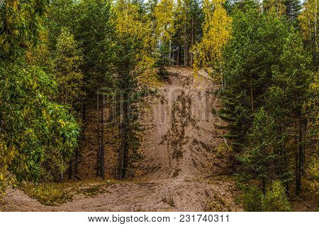 There Is A Sandy Hill In The Woods In The Fall