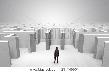 Businessman choosing between entrances in a middle of a maze
