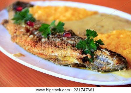 Trout Fried With Banusz. Dish With Fried Trout And Banusz With Mushroom Soup. Tasty Dish. Cooked Dis