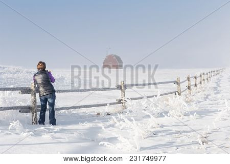 Horizontal Image Of Woman Standing By The Fence On A Cold Winter Day Photographing Picture Of A Red