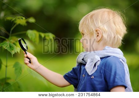 Charming Kid Exploring Nature With Magnifying Glass. Little Boy Looking At Tree With Magnifier. Summ