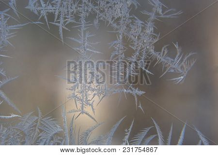 The A Ice Patterns On A Winter Window