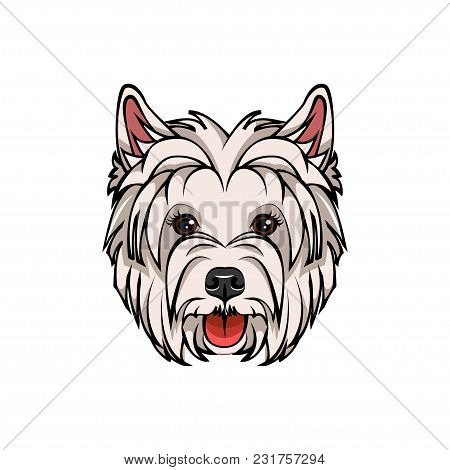 West Highland White Terrier Portrait. Dog Breed. Vector Illustration Isolated On White Background.